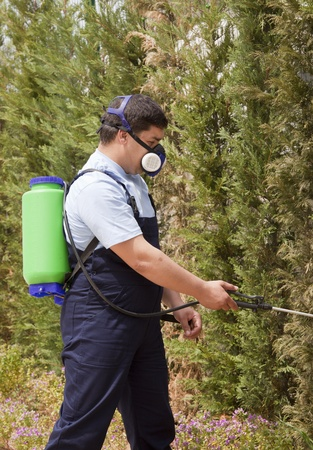 insecticidal: Man spraying insects- pest control