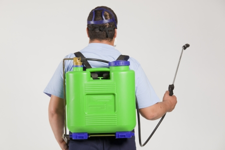 insecticide: Man spraying insects- pest control