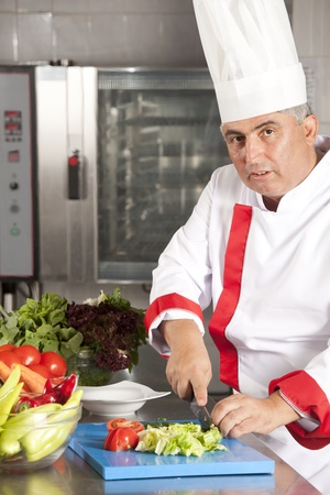 Portrait of smart chef preparing delicious meal for customer photo