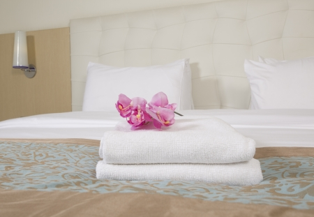 flower bed: Hotel room interior