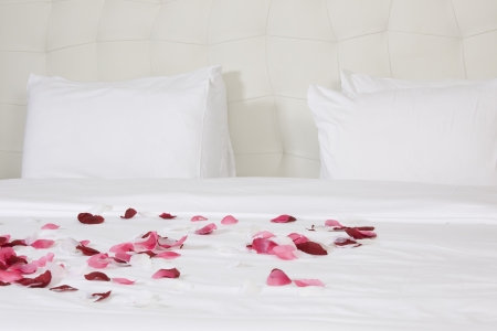 habitaci�n con cama grande y flores de color rojo photo