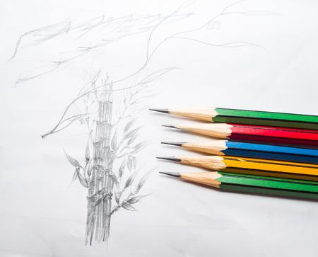 Dibujado A Mano Del Lápiz De La Espalda De Una Mujer Desnuda Vista