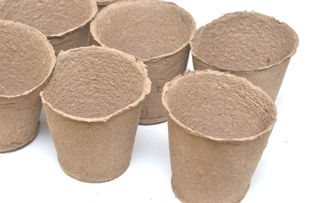 peaty: Peat pots for growing seedlings isolated on white background