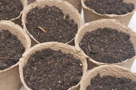 turba: close up de macetas de turba con tierra