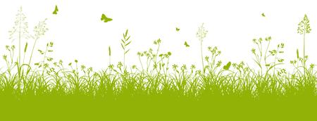 spring: Fresh Verde Paisaje Hierba con forraje y mariposas en primavera en el fondo blanco - ilustración vectorial Vectores