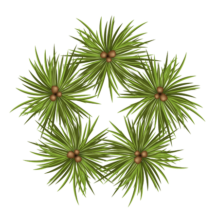 Star Shaped Abstract Vector Fir Tree Branches - Isolated on White Background. Christmas Season Decoration. Design Template Symbol. Arranged Spruce Branch for Advent Season Decor - Backdrop X-Mas Icon