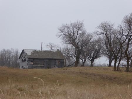 canada agriculture: A photo of a barn in a farm in alberta