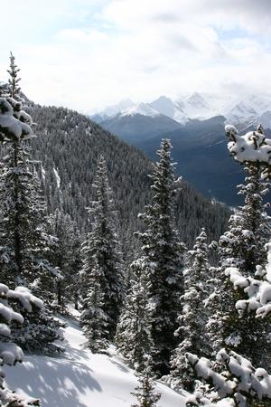 banff: Banff Stock Photo
