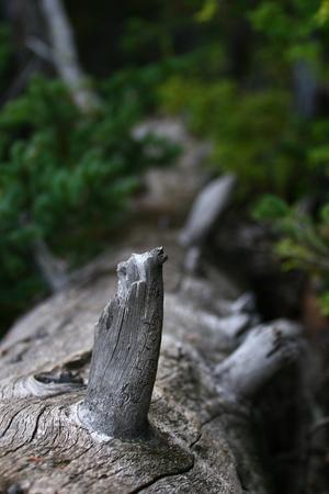 louis: Lake Louis at Banff national park