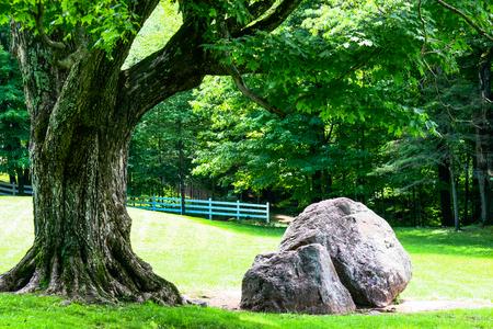 Gatineau park, photos from Mackenzie Estate Stock Photo