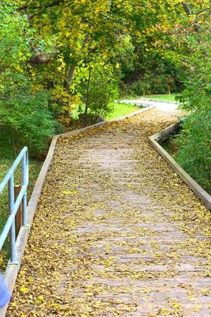 Trails and walkways at Elora trails beside the river
