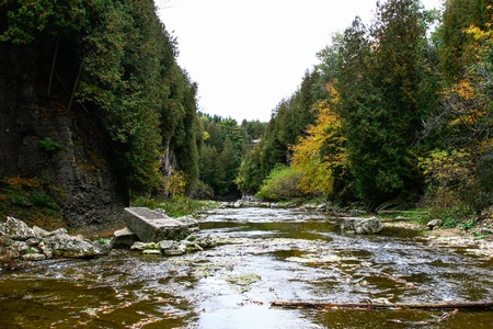 A view of Elora Gorge from below beside the river