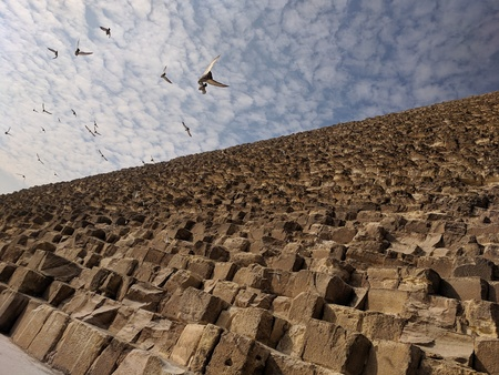 Giza Pyramids with blue skies and clouds and pigeons flying Фото со стока