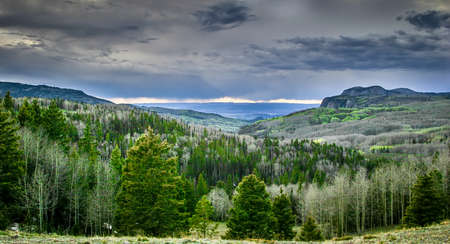 Arizona Mountains Scene Stok Fotoğraf