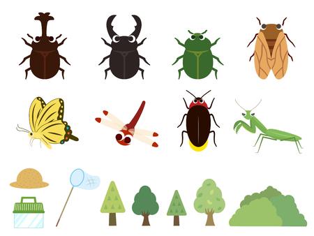 Ilustración de insectos de verano.