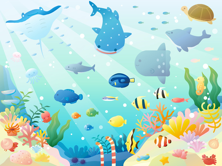 It is an illustration of a Sea animals