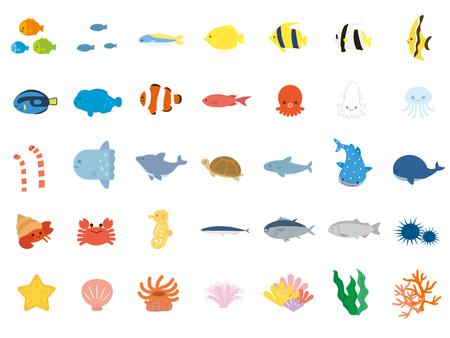 C'est + une + illustration + de + A + Mer + animaux. Vecteurs