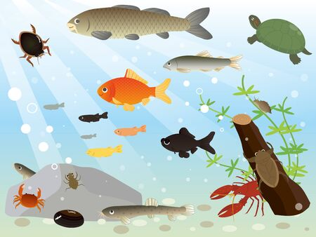 It is an illustration of a River animals. Ilustrace