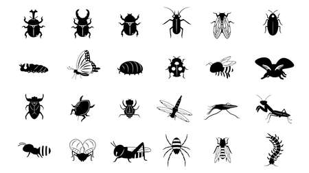 It is an illustration of a Insect set