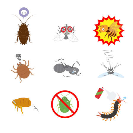It is an illustration of a Insect pest set. Illustration