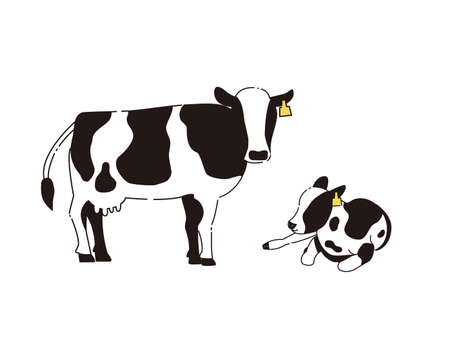 It is an illustration of a Cow and calf. 向量圖像