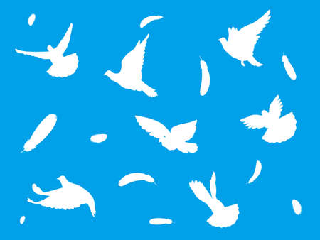 It is an illustration of  a White pigeons silhouette.