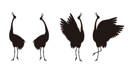 It is an illustration of a Crane courtship silhouette.