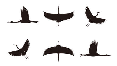 It is an illustration of a Crane flying silhouette set.