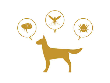 It is an illustration of a Dog and pest.