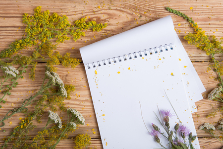 milfoil: Notepad and medicine herbs on wooden table