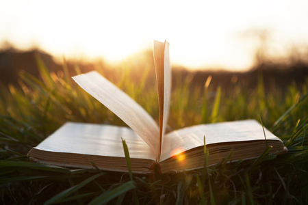 Buch auf Gras unter der Sonne Standard-Bild