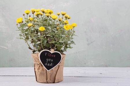 I love you dad! - beautiful  flowers in pot with blackboard Banque d'images
