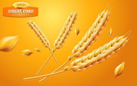 Szczegółowe kłosy pszenicy, owies lub jęczmień na białym tle na żółtym tle. Element składnika naturalnego. Tematyka zdrowej żywności lub rolnictwa, chleba lub upraw. Realistyczna ilustracja wektorowa 3d.