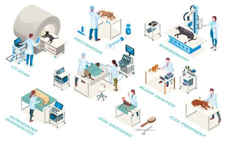 Veterinarian clinic doctors, diagnostic and treatment services, vector isometric icons. Veterinary medicine surgery, medical examination ultrasound, blood analysis, radiography and vaccination