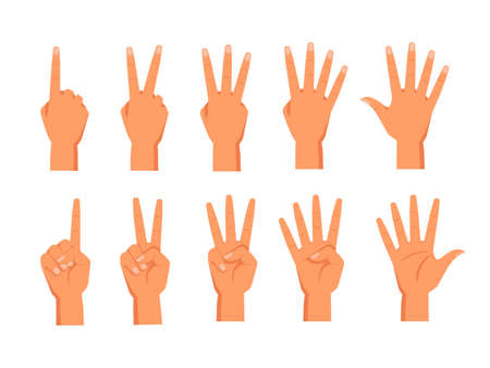 Set of vector hands showing fingers. Front and back view of palm with fingers counting. Sign for one and two, three, four, five numbers. Wrist with digit gesture. Math education for school. Arm count Vettoriali