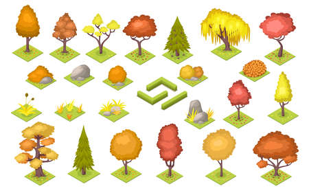 Set of isolated vector autumn trees and stones, bush fence. Garden and park landscape at fall. Forest and wood cartoon plants at season. Nature environment decoration elements. Oak, fir, poplar