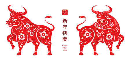 Happy Chinese New Year text translation. 2021 year of Metal Ox lunar holiday design. Vector bull animals with decorative flower ornaments, fortune written in Chinese. CNY symbol, Taurus horoscope sign