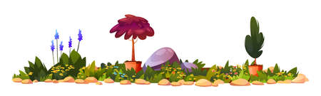 Flowerbed on backyard in blossom, potted flowers Ilustrace