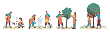 Planting tree isolated growth process set, cartoon man and woman cartoon characters gardening together. Vector people plant sprout with shovel, couple husband and wife gardeners growing apple-tree