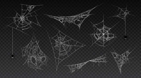 Spiderweb with hanging spider insect, isolated set of cobwebs, old and scary, dark and vintage. Halloween traditional decoration for haunted houses. Tangled threads. Cartoon vector illustration