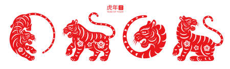 Year of Tiger 2022 text translation, set of red wild cats with flower arrangements, tigers with floral patterns. Happy Chinese holiday celebration, spring festival mascot, greeting cards decoration