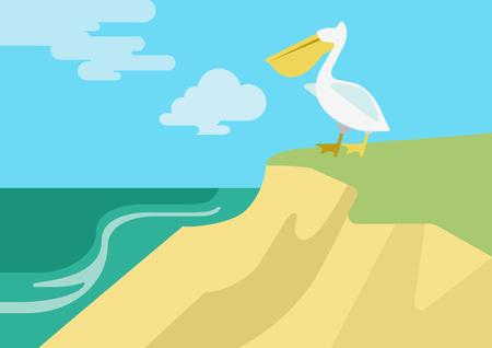 pelicans: Pelican on the beach river bank habitat flat design cartoon vector wild animals birds. Flat zoo nature children collection.