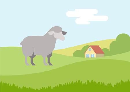speelveld gras: Sheep on farm grass field flat design cartoon vector animals. Flat zoo nature children collection.