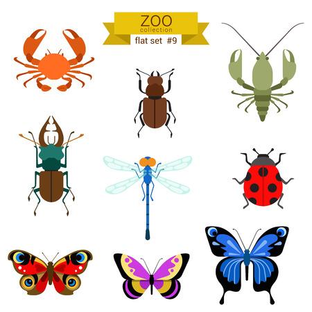 フラットなデザイン ベクトル昆虫アイコンを設定。蝶、カニ、カブトムシ、がん、トンボ、てんとう虫。フラット動物園子供漫画のコレクション。