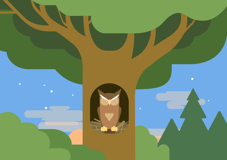 hollow: Owl in a hollow tree forest habitat flat design cartoon vector wild animals birds. Flat zoo nature children collection.