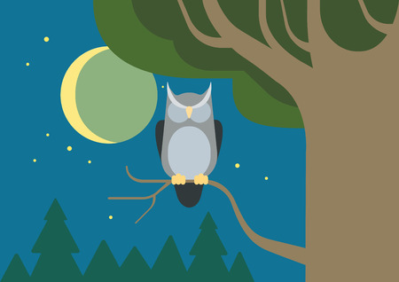 night: Owl in a hollow tree night forest habitat flat design cartoon vector wild animals birds. Flat zoo nature children collection.
