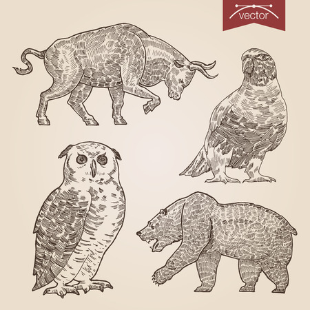 Engraving style pen pencil crosshatch hatching paper painting retro vintage vector lineart illustration wild animals and birds set. Bull and bear stock exchange finance concept, owl and dove. Illustration