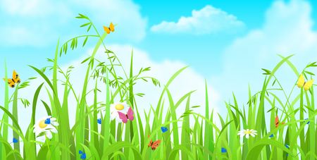 sky and grass: Nice shiny fresh butterfly flower grass lawn background with clouds sky. Nature spring summer backgrounds collection. Illustration