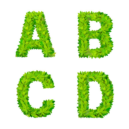 foliar: ABC grass leaves letter number elements modern nature placard lettering leafy foliar deciduous vector set. A B C D leaf leafed foliated natural letters latin English alphabet font collection.