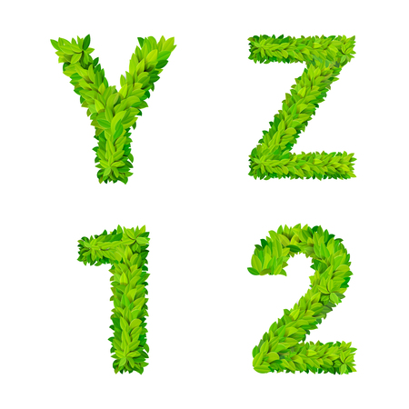 leafed: ABC grass leaves letter number elements modern nature placard lettering leafy foliar deciduous vector set. Y Z 1 2 leaf leafed foliated natural letters latin English alphabet font collection. Illustration